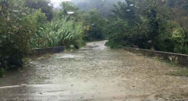 Maltempo: chiusa la provinciale Filogaso-San Nicola, allagamenti a Nicotera e Filadelfia