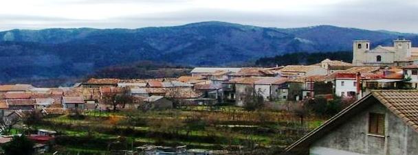 """Fabrizia Comune virtuoso, Sel plaude al """"suo"""" sindaco Minniti"""