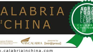 """""""Calabria in China"""", missione compiuta"""
