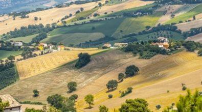Un patto sociale per lo sviluppo dell'agricoltura, la sfida della Cisal parte da Fabrizia