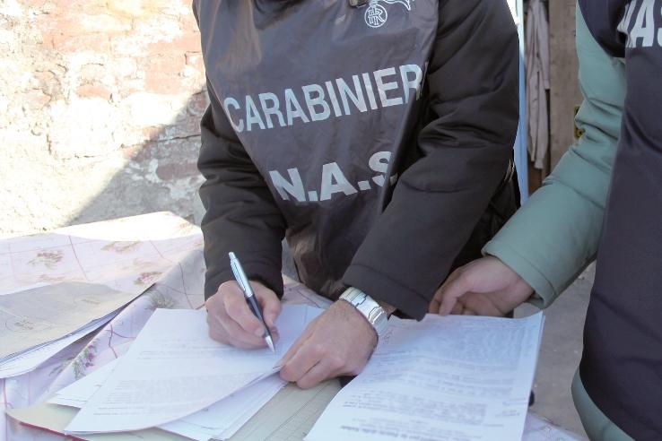Blitz di carabinieri e Nas a Tropea, scoperti lavoratori in nero e alimenti avariati