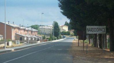 Nardodipace: la composizione del nuovo Consiglio comunale