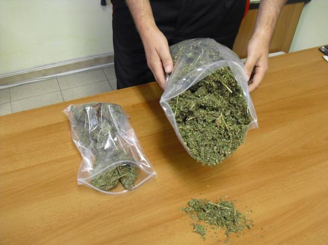 Marijuana ritrovata dall'Arma
