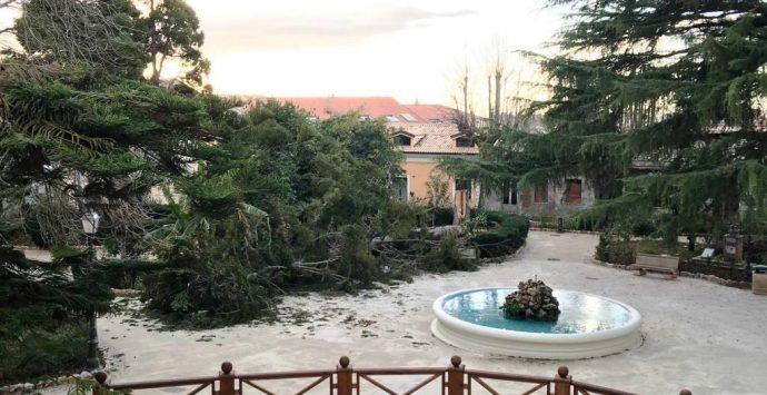 Cade albero nella villa comunale, operaio ferito