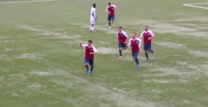 Vibonese, a passi larghi verso i play off – VIDEO