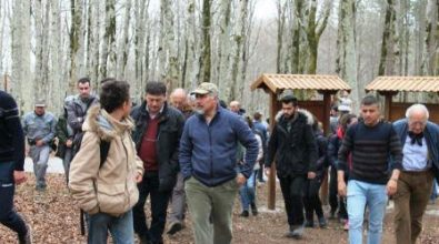 Mongiana, presentato il percorso scientifico nel bosco del Marchesale
