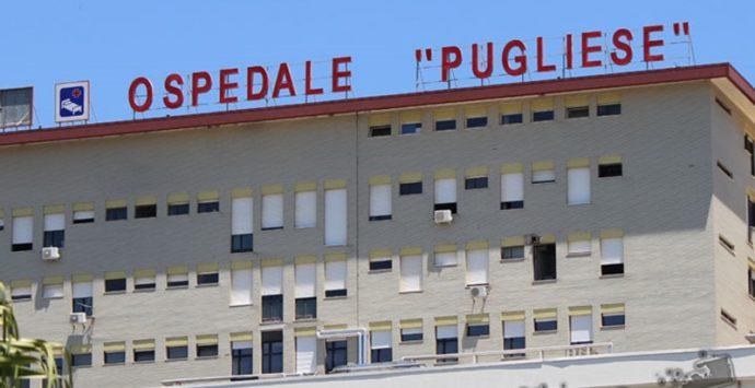 Covid, 49 nuovi casi nel Vibonese accertati all'ospedale Pugliese