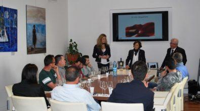 Conoscere il vino, alla Camera di commercio il corso rivolto ai ristoratori