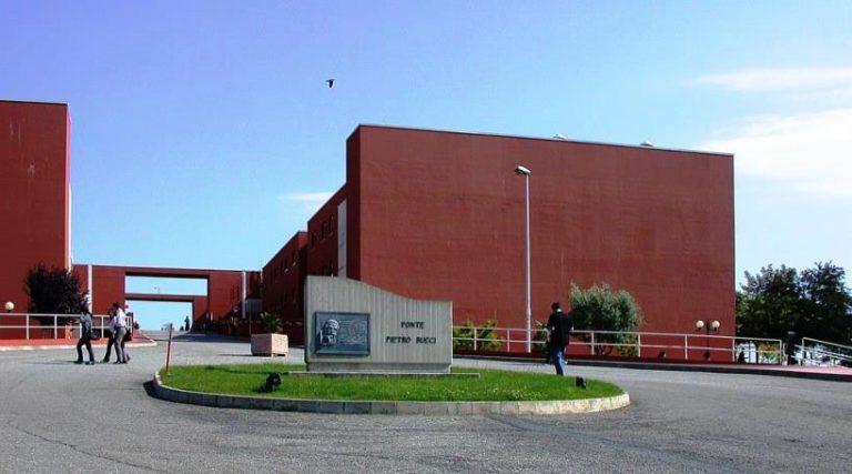 Orientamento, Università Futura a confronto con gli studenti vibonesi