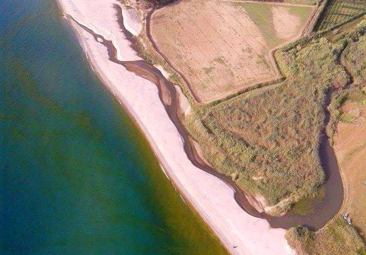 Mare verde a Pizzo, Callipo: «Solo fioritura algale. Acque eccellenti»