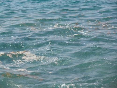 Allarme batteri nelle acque di Ricadi e Joppolo