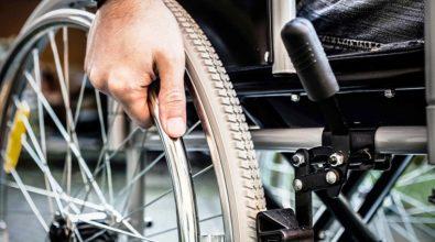 Vibo, il Comune istituisce i Garanti per i disabili e per l'infanzia