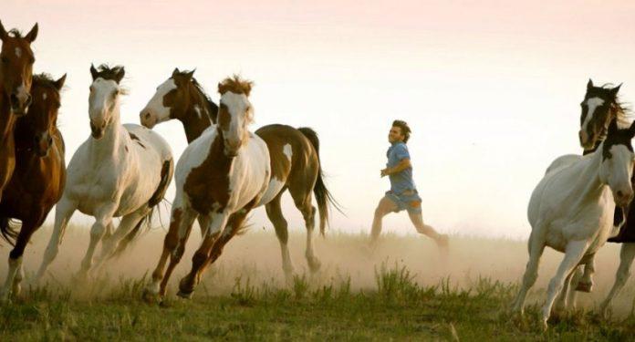 Una suggestiva immagine tratta dal film