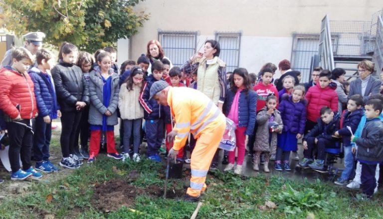 """A Sant'Onofrio celebrata la """"Giornata dell'albero"""""""