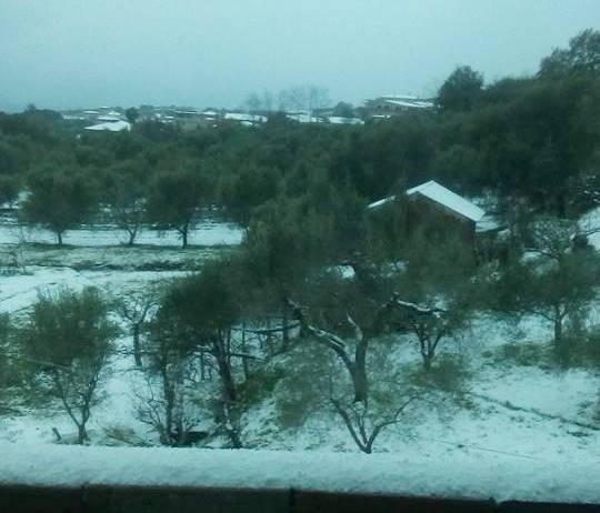 Neve sull'altopiano del Poro, disagi alla circolazione