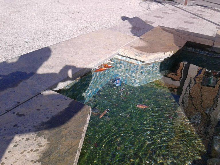 Vibo Valentia, degrado e abbandono per la vasca di piazza Municipio (FOTO)