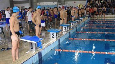 """Campionati di nuoto """"Asi"""" Calabria: bilancio positivo. Ecco i vincitori"""