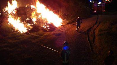 Fienile in fiamme nel Vibonese, morti alcuni animali