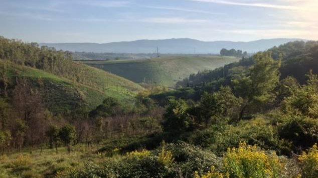 """""""Eco-distretto"""" a Sant'Onofrio? Prima è indispensabile la bonifica del sito"""