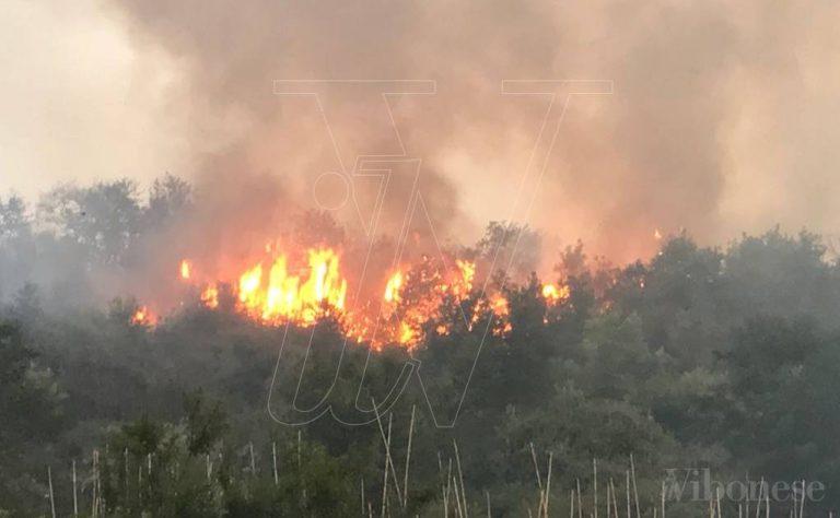 Inferno di fuoco nel Vibonese, oltre 60 interventi in due giorni