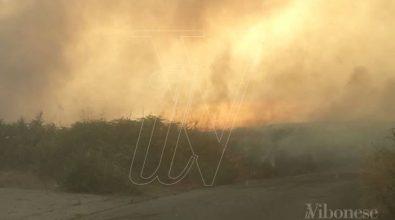 Incendi: vasto rogo a Vibo, critica la situazione a Monte Poro