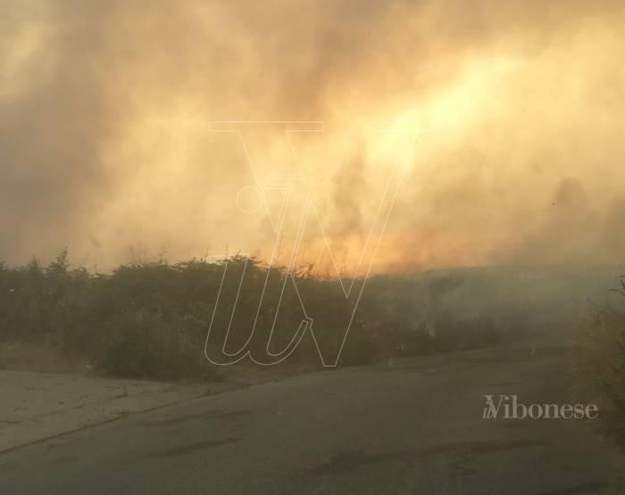 Vasto incendio nel Vibonese, chiesto l'intervento dei mezzi aerei