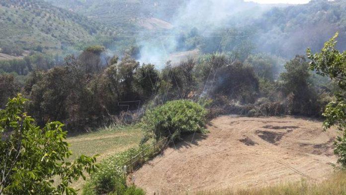 L'incendio a Piscopio