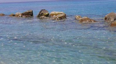Mare sporco a Capo Vaticano e Tropea: le prime segnalazioni (FOTO)