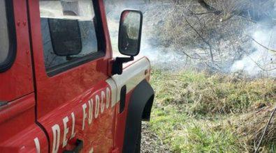 Uliveto in fiamme nel Vibonese, donna muore intossicata dal fumo