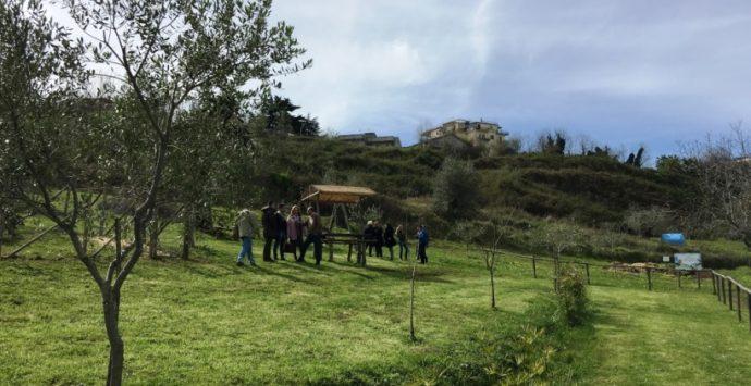 """A Vibo l'""""Agri cool tour Festival"""", Francesca Incudine si esibisce nella fattoria """"Junceum"""""""