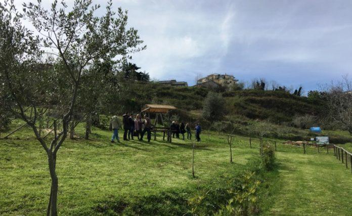 La fattoria didattica Junceum