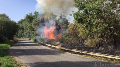 Emergenza incendi, dalla Flai-Cgil un plauso ai forestali calabresi