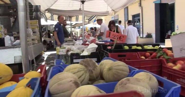 Il mercato di Vibo Marina trasloca in centro: partenza tra luci e ombre (VIDEO)