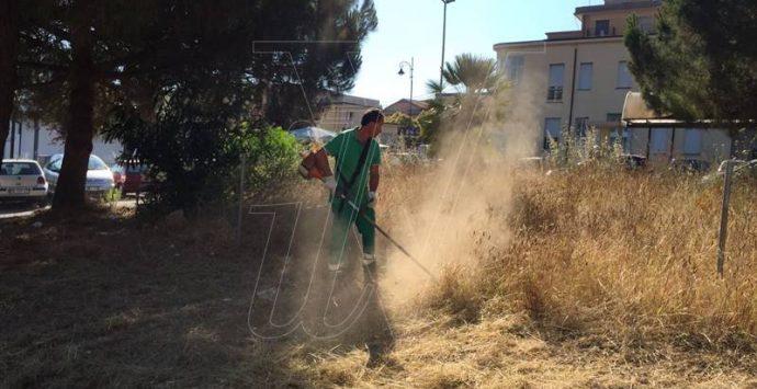 Degrado a due passi dall'ospedale di Vibo, il Comune ripulisce l'area (FOTO/VIDEO)