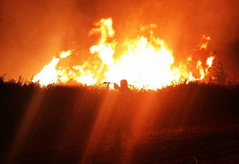 """Emergenza incendi nel Vibonese, """"superlavoro"""" per i Vigili del fuoco"""