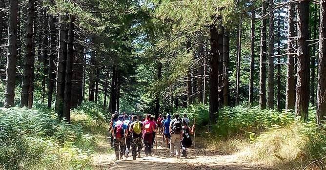 Turismo sostenibile, il Parco delle Serre punta su trekking e ciclovie