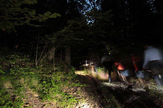I carabinieri alla ricerca di due persone smarrite nei boschi di Serra San Bruno
