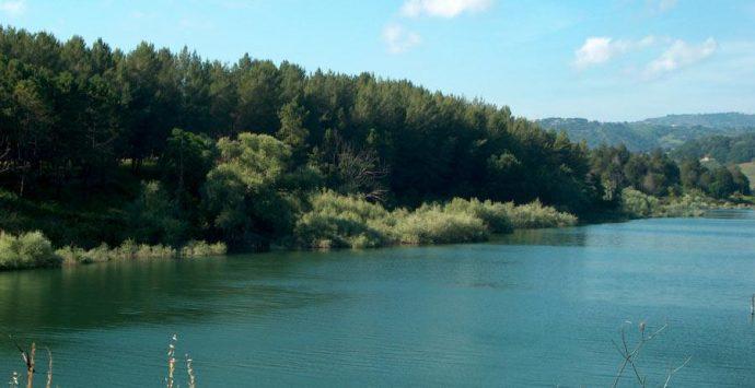 """Lago Angitola, Kalabria Trekking traccia il """"Sentiero degli aironi"""""""