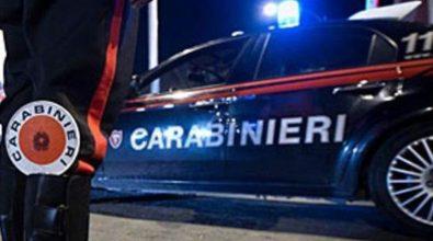 Controlli dei carabinieri nelle Serre vibonesi, multe e denunce