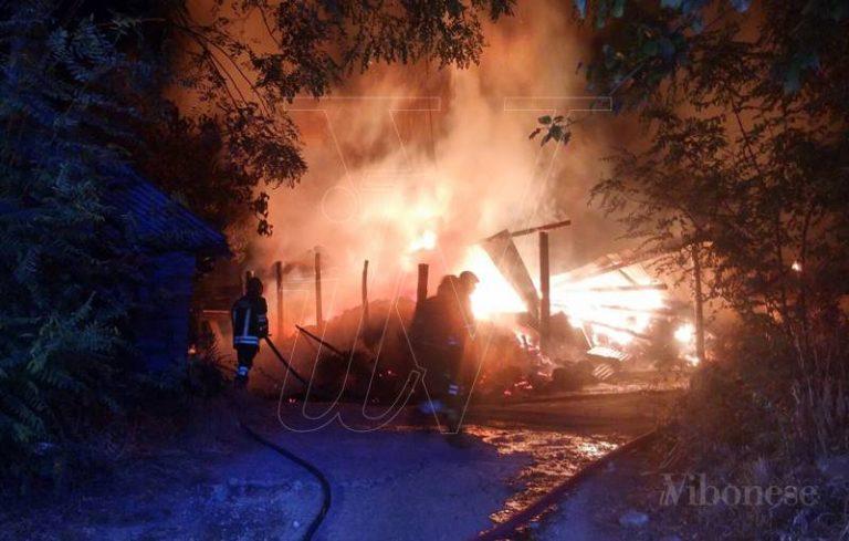Incendio devasta casolare a Gerocarne, animali arsi vivi tra le fiamme