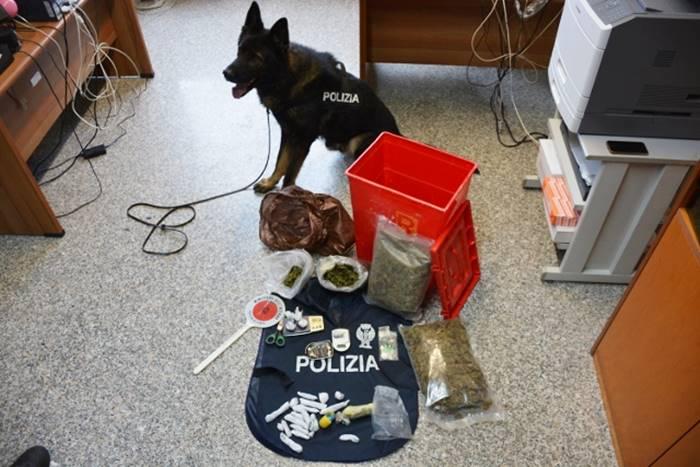 Cocaina, hashish e marijuana, un arresto della polizia a Vibo