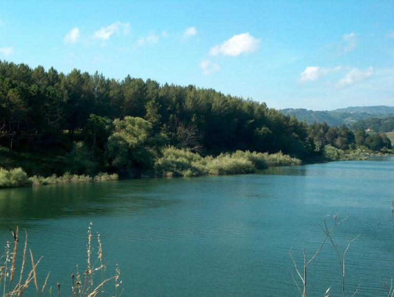 La denuncia del Wwf: «Sostanze ignote nel torrente Reschia, immissario del lago Angitola»