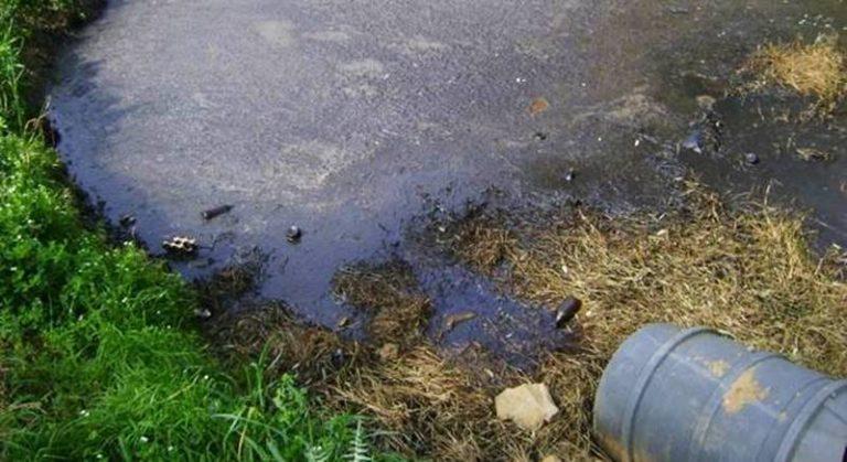 Scaricavano acque reflue senza autorizzazione, denunciati i proprietari di un oleificio di Mileto