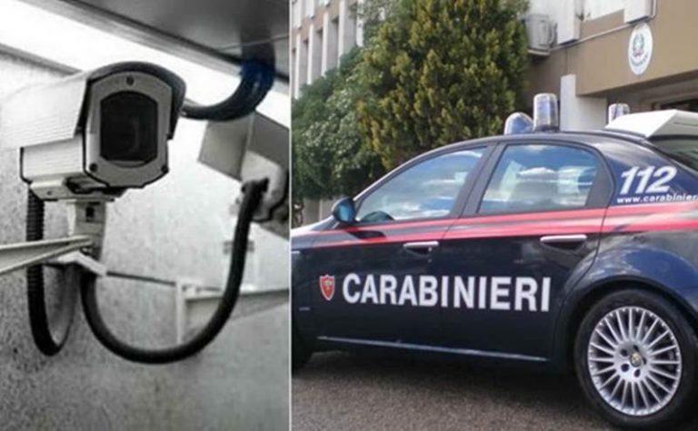Telecamere per spiare i dipendenti e trasporto di alimenti fuorilegge nel Vibonese