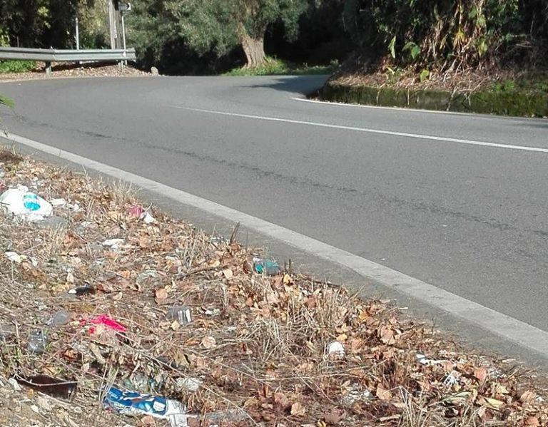 Rifiuti sulle strade del Vibonese, Paolillo (Wwf): «Non tagliate le erbacce, coprono il degrado»