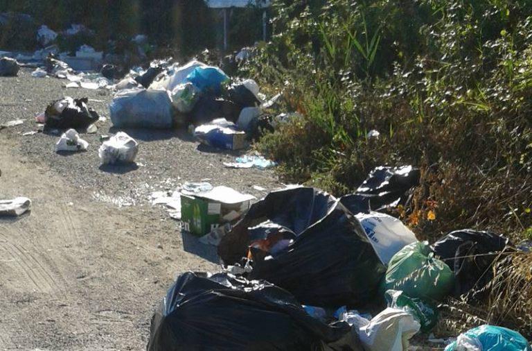 Rifiuti abbandonati a Vibo, l'appello dell'assessore Russo: «Aiutateci a fermare gli incivili»