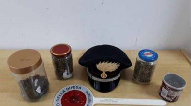 Droga in un casolare a Nardodipace, arrestato 25enne