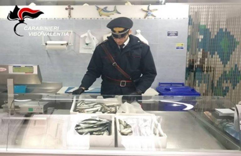 Ricadi, sequestrati 11 chili di pesce di dubbia provenienza