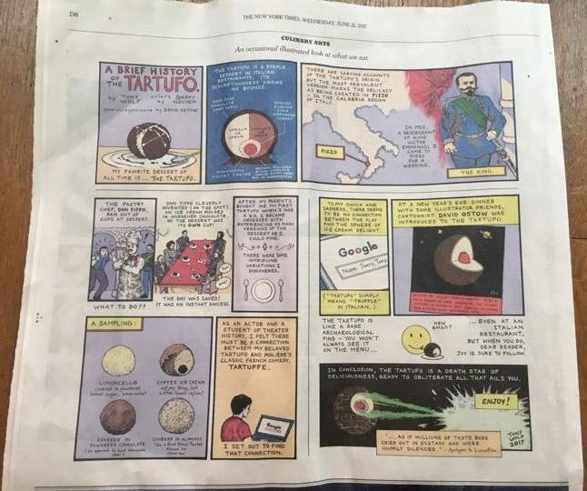 Il fumetto pubblicato sul New York Times