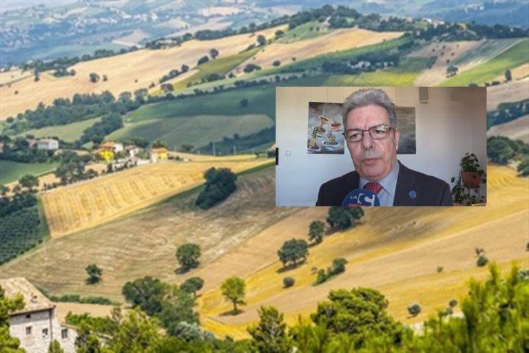 Gal nel Vibonese, il presidente del Cogal aspetta la sentenza nel merito del Consiglio di Stato
